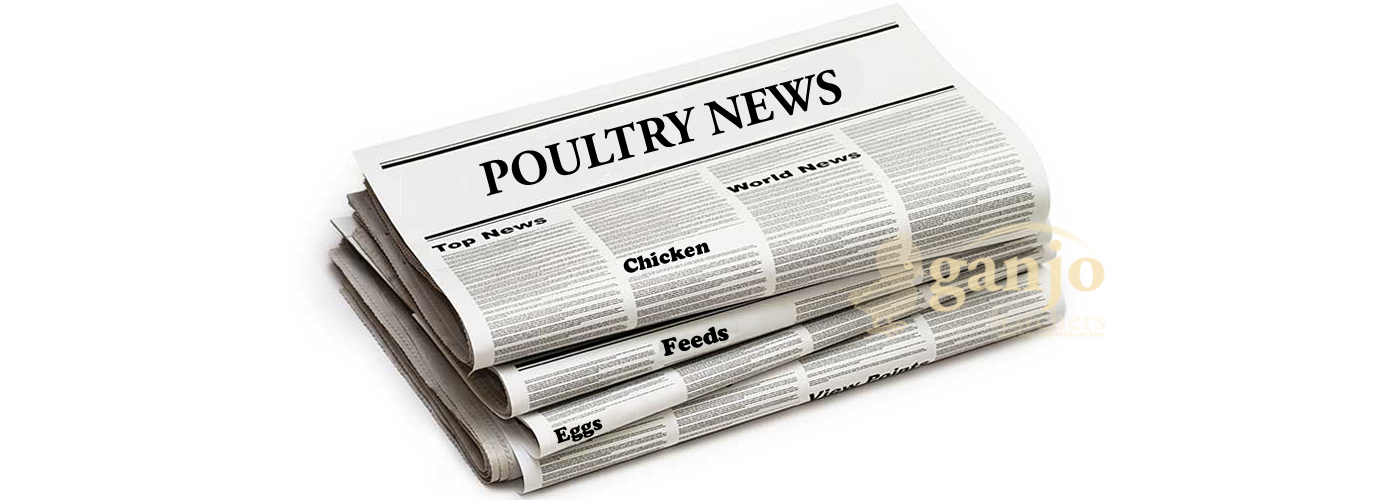 Latest News in World Poultry